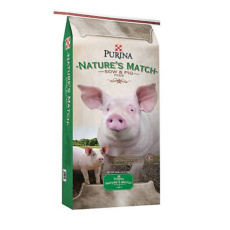 Pig: Nature's Perfect Food