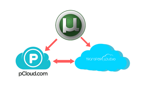 How to Download Torrents: Unlimited Transfer of Music, Movies, and Images